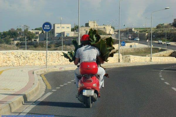 Only in Malta