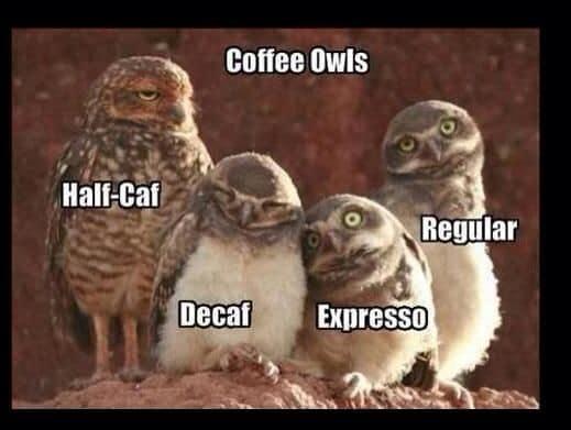 caffè a Malta